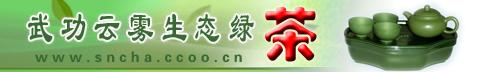 武功云雾生态绿茶