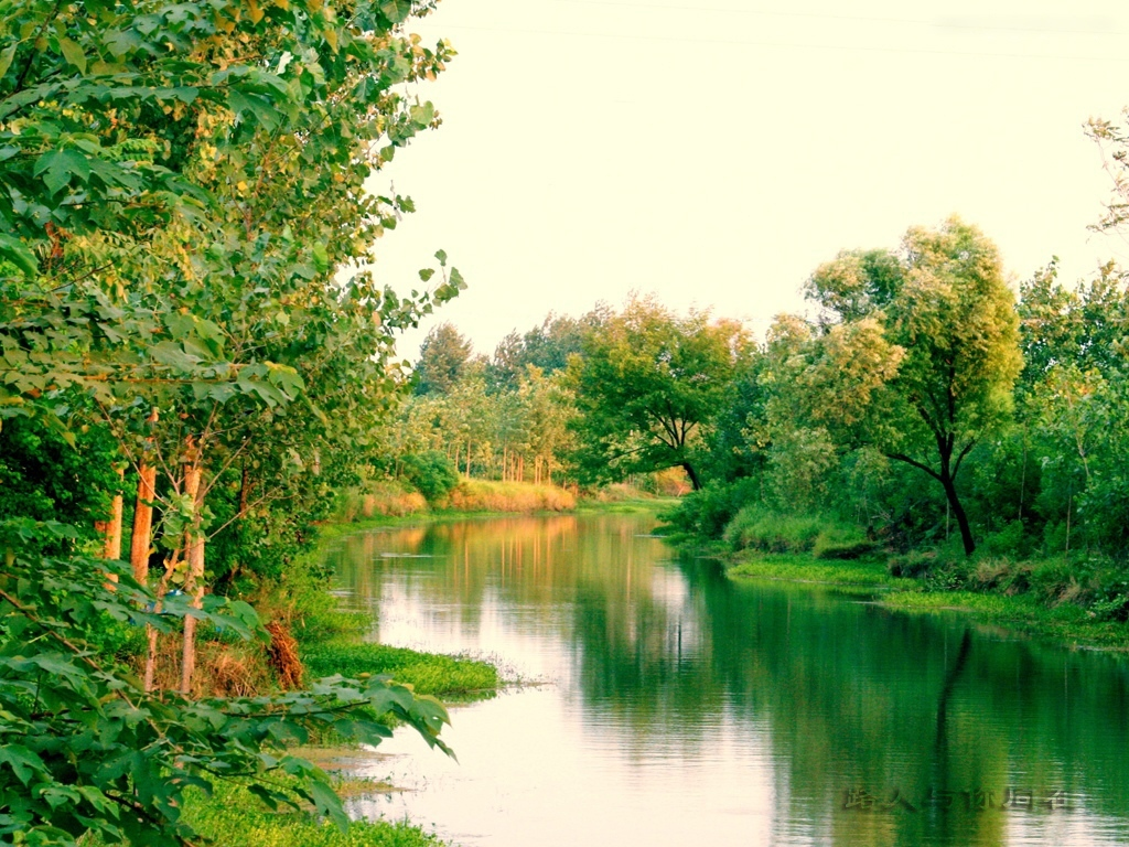 家乡的小河