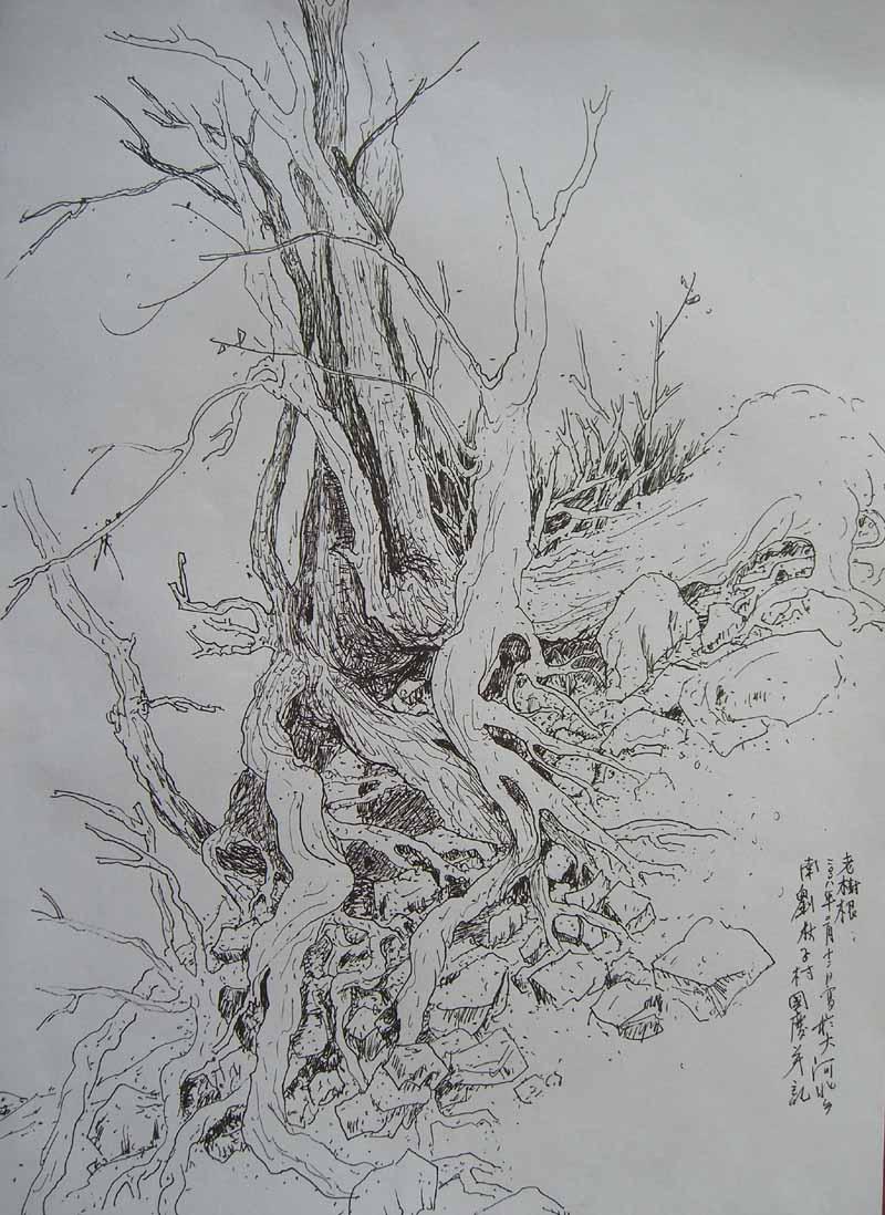 树根简笔画简单